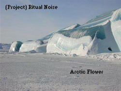 (Project) Ritual Noise - Arctic Flower (2008)