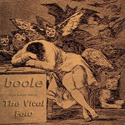Boole - The Vital Few (2008)
