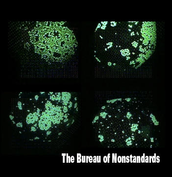 Bureau Of Nonstandards, The - The Bureau Of Nonstandards