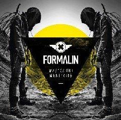 Второй альбом Formalin выйдет в начале весны