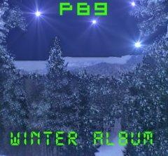 P89 - Winter Album (2012)