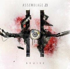"Новый альбом Assemblage 23 ""Bruise"" готов!"
