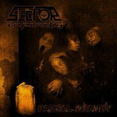 "Дебютный альбом Sector Infinity - ""Partial Insanity"""