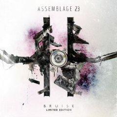 Рецензия: Assemblage 23 - Bruise (2012)