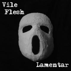 """Питерский проект Vile Flesh выпускает новый альбом мрачных экспериментов """"Lamentar"""""""