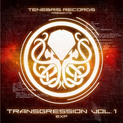 VA - Transgression Vol. 1: Exp (2016)