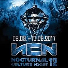Отчёт: фестиваль Nocturnal Culture Night 12 (2017)