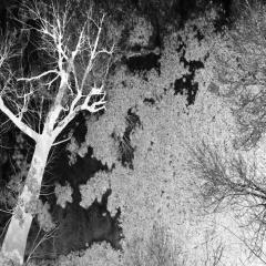 """""""Tritone Musack"""" - новый альбом индустриального проекта Malicious Wonderland"""