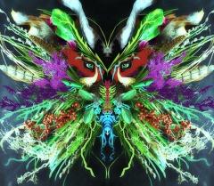 """""""Hermerzaphrodites"""" - новый экспериментальный альбом Merzbow"""