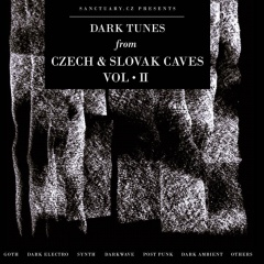 VA - Dark Tunes From Czech & Slovak Caves. Vol. II (2020)